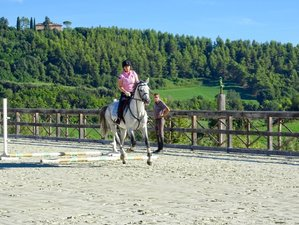 4 Day Long Weekend With Jumping and Flatwork Training Horse Riding Holiday in Fermo, The Marches