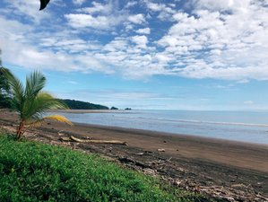 5 Days of Yoga in Colombian Pacific Coast with whales