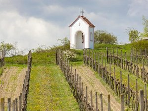 2 Day Wine Holiday in Znojmo, South Moravia
