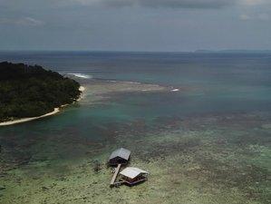 8 Days Surf Trip in Banyak Islands, Indonesia