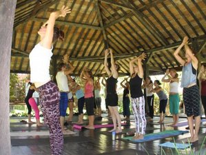 6 jours de stage de yoga restauratif personnel à Bali