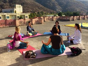 17 jours en retraite de yoga Lotus of the Desert, Inde