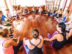 26 días profesorado de yoga 200 horas en Ko Tao, Tailandia