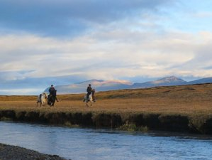 8 Day Ride With an Icelandic Horse Riding Holiday in Egilsstaðir