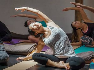 29 Days 200hr Hatha Vinyasa Bali Yoga Teacher Training
