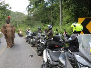 14 Days Guided Motorcycle Tour in Thailand From Bangkok to Pai, Golden Triangle, and Chiang Rai
