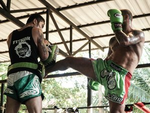 1 Month of Intense Muay Thai Camp in the Tropical Paradise of Koh Samui, Thailand
