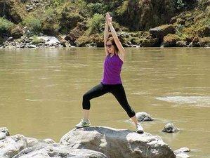 7 días retiro de yoga en Rishikesh, India