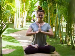 4 Days Detox for the Mind and Yoga Holiday in Siem Reap, Cambodia