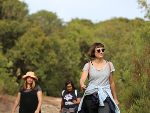 4 Day Women's Writing and Walking Weekend with Yoga in Margaret River, Western Australia