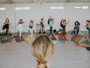 7 Day Level 1 - 5 Elements Yin Yoga Teacher Training in Tulum
