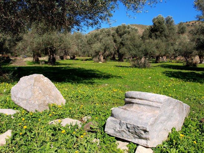 8 Days Eleo Olive Harvest Retreat in Crete