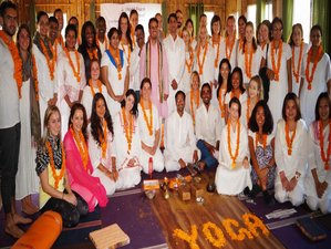 31 Days 300-Hour Yoga Teacher Training in Rishikesh