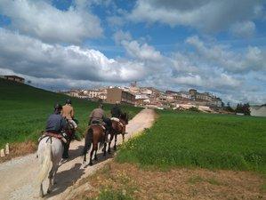 8 Days Camino de Santiago Horse Riding Holiday Roncesvalles - St. Domingo de Calzada, Spain