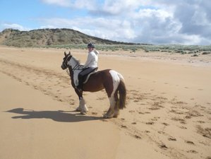 3 Day Learn to Ride Horse Riding Holiday in Bundoran, County Donegal