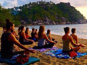 8 Days The Yoga of Love Yoga Retreat in Costa Rica