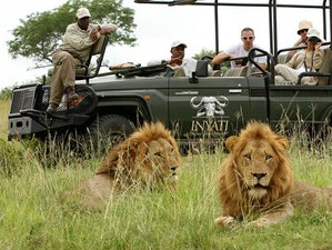 3 Days Guided Safari South Africa