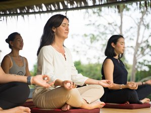 7 Day De-Stress and Burnout Relief Wellness Retreat with Meditation and Yoga in Koh Samui