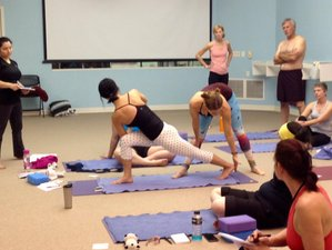 27 Day or Self-Paced 300-Hour Online Yoga Alliance Approved Advanced Yoga Teacher Training Course