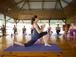 8 Days Thrive Yoga Retreat in Costa Rica