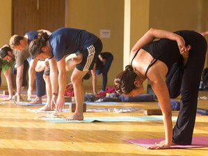 30 Days 300-Hour Yoga Teacher Training in Rishikesh, India