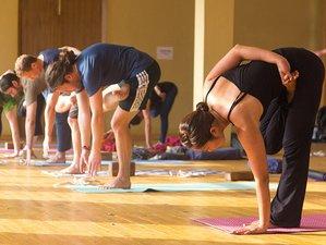 30 jours-200h de formation de professeur de yoga à Rishikesh