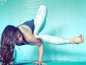 43 Days 500-Hour Spiritual and Mystical Yoga Teacher Training Course on Cudjoe Key, USA