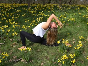 4 Days Scandi Lakeside Yoga Retreat in Sweden