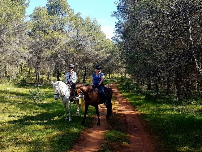 5 Days Extraordinary Horse Riding Holiday in Andalucia, Spain