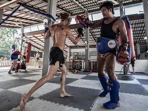 1 Week All-Levels Muay Thai and 10th Planet Jiu-Jitsu Training Camp in Koh Tao, Thailand