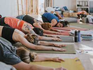 7 Day 5 Elements Yin Yoga Teacher Training in Mallorca, Balearic Islands