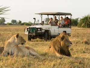 3 Days Triangle Garden of Eden and Great Migration Safari in Serengeti National Park, Tanzania
