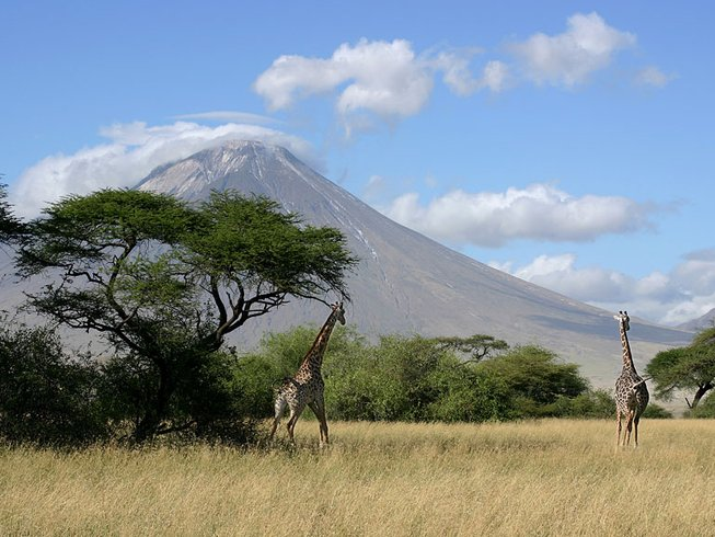 6 Days Machame Route Kilimanjaro Safari in Tanzania
