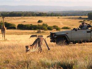 4 Days Wildlife Safari South Africa
