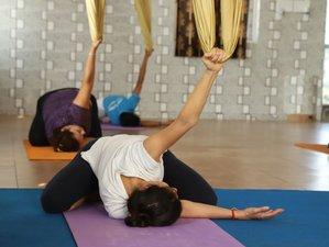 28 Day 200-Hour Yoga Teacher Training and 50-Hour Aerial Yoga Teacher Training in Rishikesh