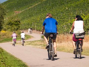 9 Days Bike Tour Along River Moselle in Germany