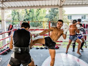 1 Month Muay Thai and BJJ Training in Chiang Mai