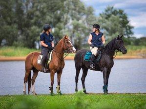 8 Day Horseback Riding Trail Holiday in Hitzacker, Lower-Saxony