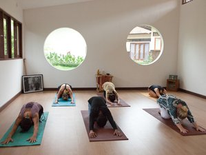 6 Days Ayurvedic Detox Yoga Retreat Bali