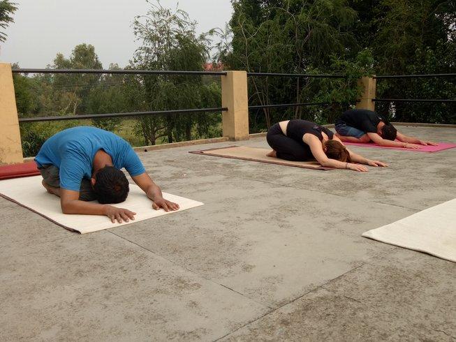 10 Tage Wohlfühl und Abnehm Yoga Urlaub im Himalaya, Indien