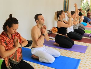 5 Day Relaxing and Refreshing Meditation and Yoga Retreat in Cali, Valle del Cauca