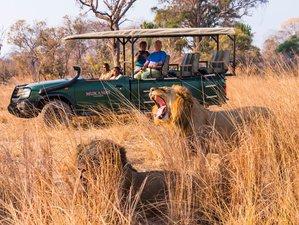 13 Days Exciting Safari in Zambia