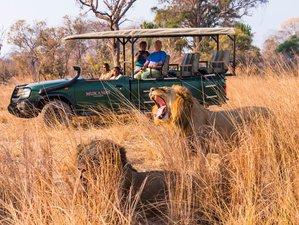 13 días de emocionante safari en Zambia