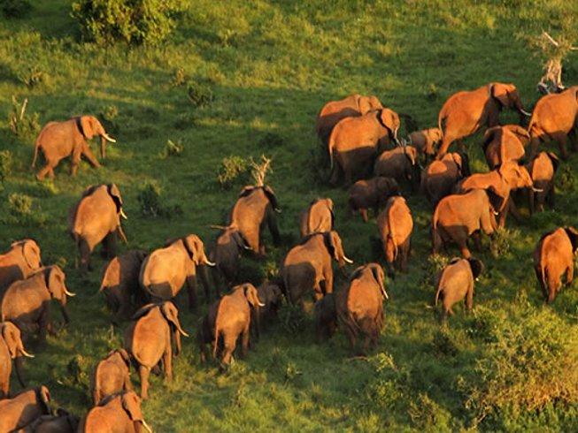 3 Days Budget Safari in Kenya