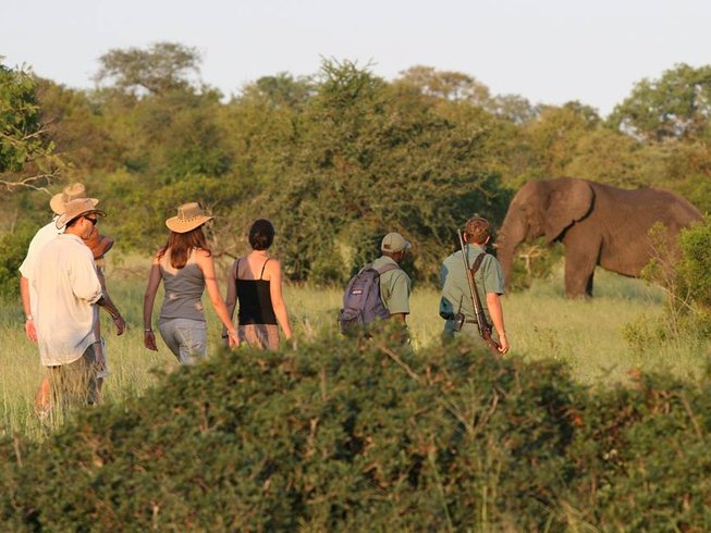 7 Days Complete Kruger National Park Safari