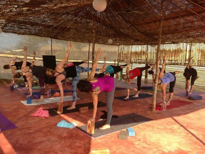 7 Days Power Flow and Yin Pranayama Yoga Retreat Goa