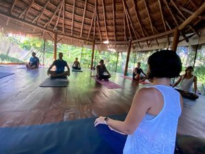 6 Day Diving and Yoga Retreat in Cozumel Island, Quintana Roo