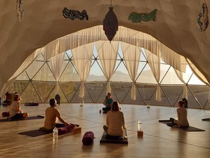 8 Day Relax and Restore Yoga Holiday with Ellen Aarts in Villamartín, Andalusia