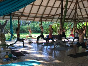 21 Days 200-Hour Pura Vida Yoga Teacher Training in Mal Pais, Costa Rica