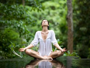 8 Day Living with Purpose Yoga and Transformation Retreat in Seseh, Bali